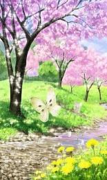 Flori Imagini de Fundal