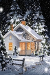Winter Scenary Live Wallpaper